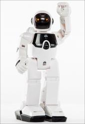 Humanoider Roboter - einfach programmieren.