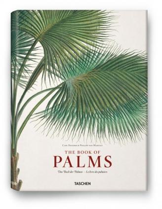 Paradiesisch! Das Buch der Palmen.