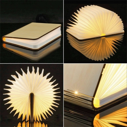 Buch-Lampe LED Groß.