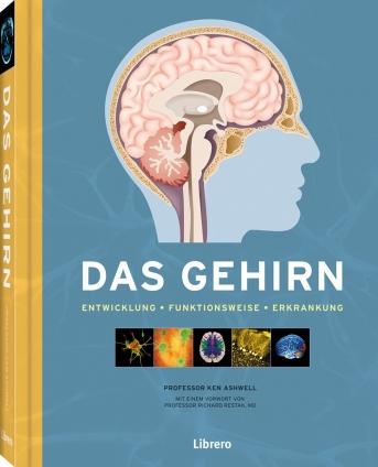 Prof. Kenneth Ashwell: Das Gehirn.