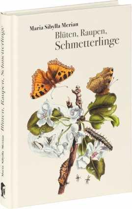 Blüten, Raupen, Schmetterlinge.