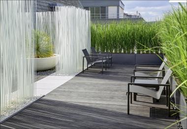 Bild Der Wissenschaft Shop Sichtschutz Und Raumteiler Im Garten