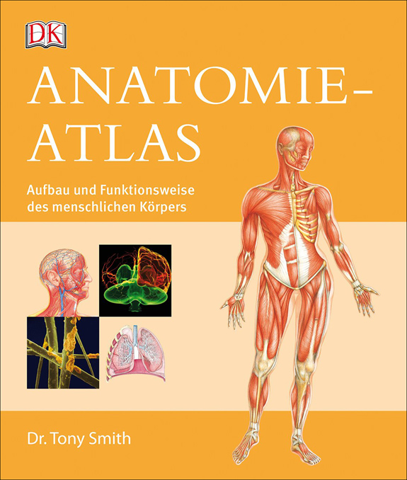 bild der wissenschaft Shop | Anatomie-Atlas. | Erlesenes Wissen ...
