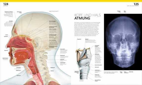 bild der wissenschaft Shop   Prof. Dr. Alice Roberts: Anatomie und ...
